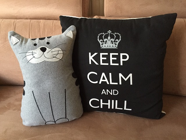 polštář s kočičkou