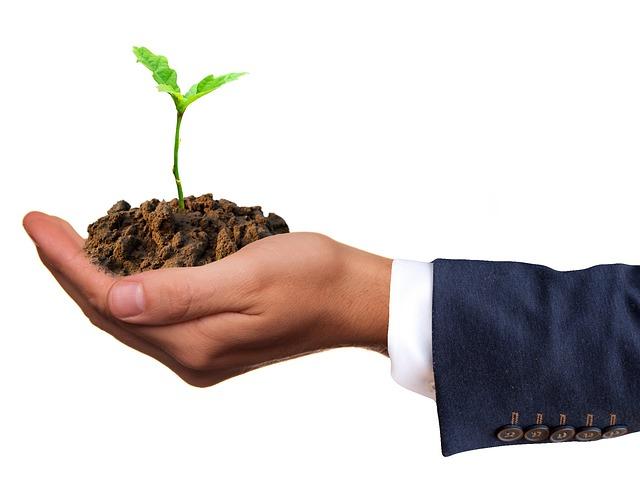pěstování na dlani