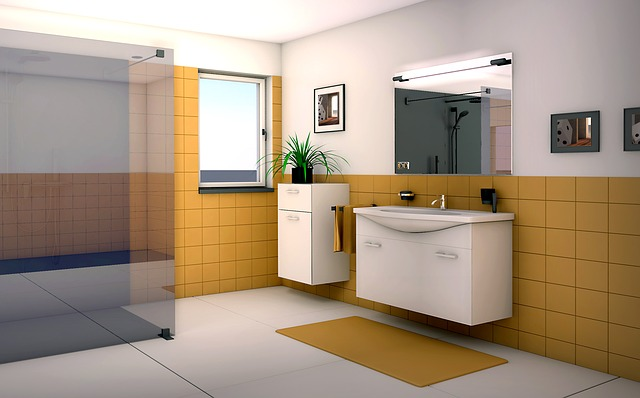 Prezentace koupelny