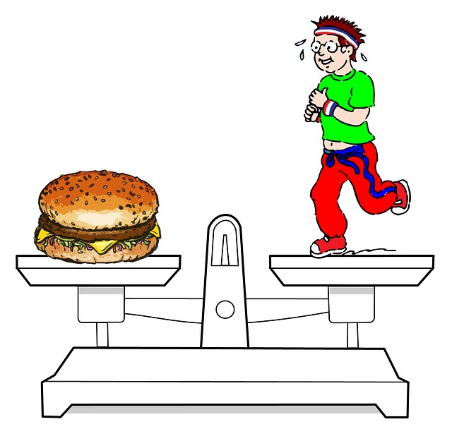 ilustrace znázornění diety.jpg